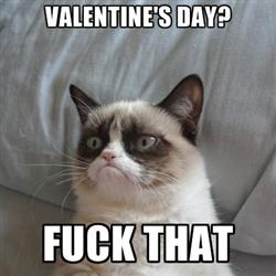 best 25 grumpy cat valentines ideas on pinterest grumpy cat school grumpy cat humor and no grumpy cat