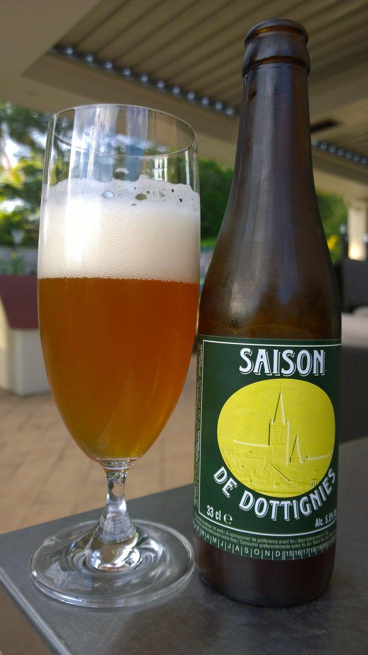Saison de Dottignies ... well balanced... refreshing... like it