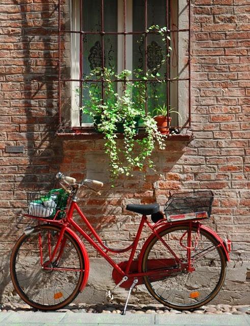 x bike ferrara - photo#13