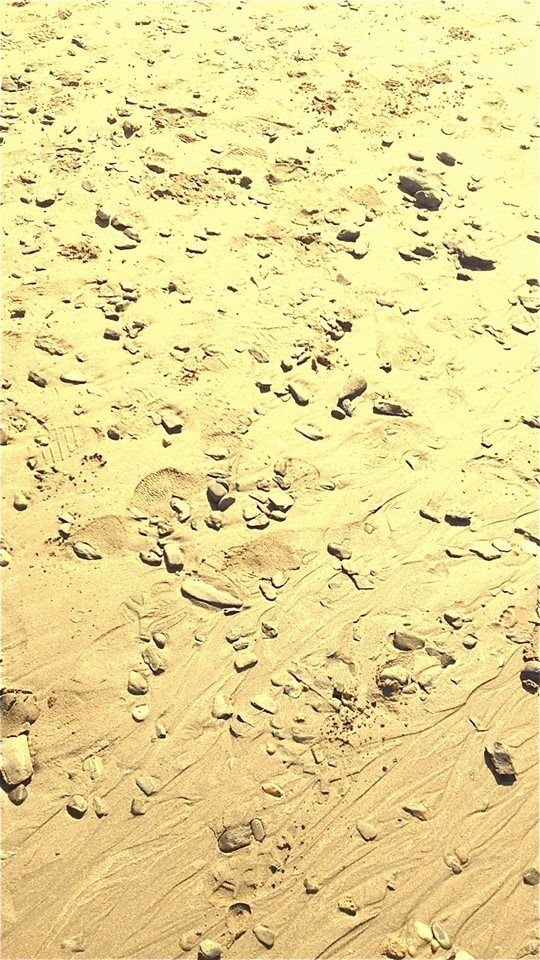 Saunton Sands close up