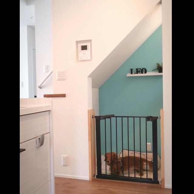 Mayu..さんの、キッチン横,ドッグスペース,ダイソー,ベビーゲート,イケア,ドッグハウス,階段下,新築一軒家,こどもと暮らす,犬と暮らす,キッチン,のお部屋写真