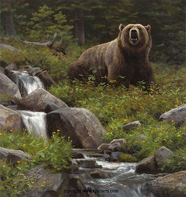 17 Best Ideas About Wildlife Art On Pinterest Owl Art
