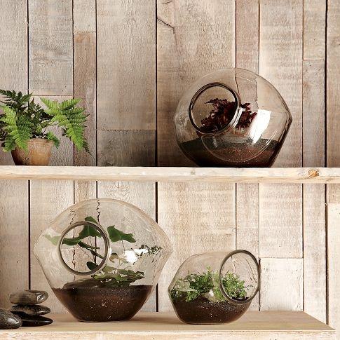 really want one. Pebble Terrarium: $29 - $49 #Terrarium