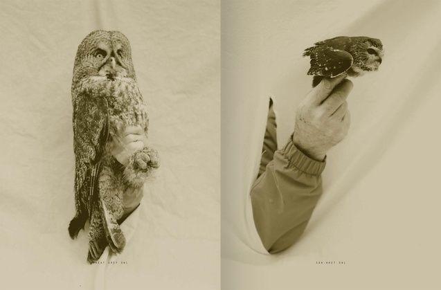 Victor Schrager: Bird Hand Book - Store - Graphis