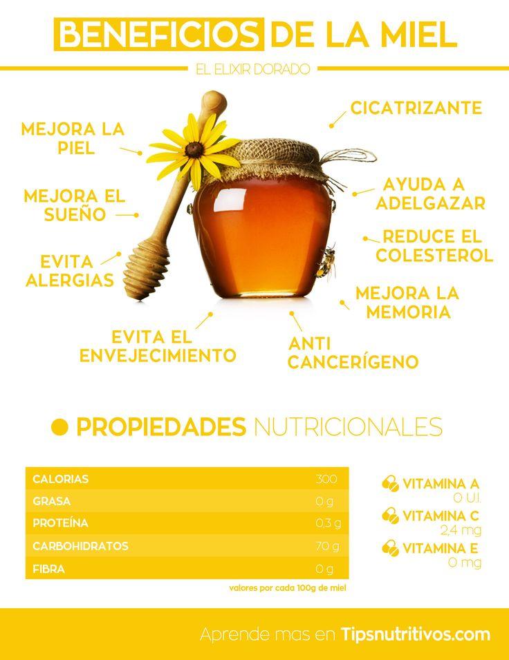 Infografia de la miel