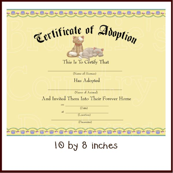10+ Parasta Ideaa Pinterestissä: Adoption Certificate