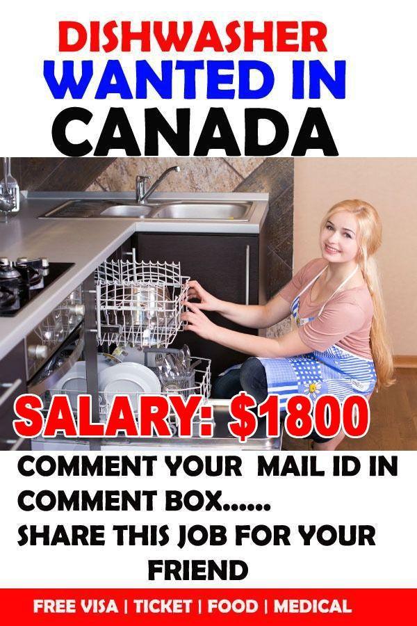 Dishwashing Jobs Good Paying Jobs Job Dishwasher