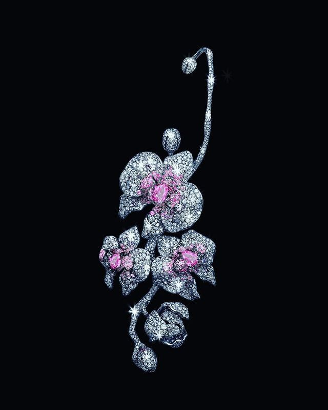 Diana Zhang Orchid Princess earring and brooch. #dianazhangjewelry #dianazhang
