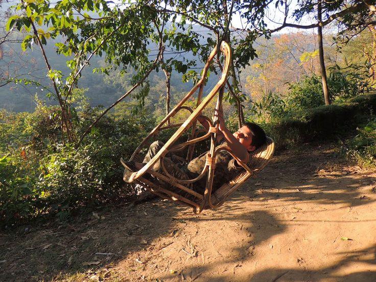 A Wandering Mind: Collecting Memories at Tathagata Farm, Darjeeling