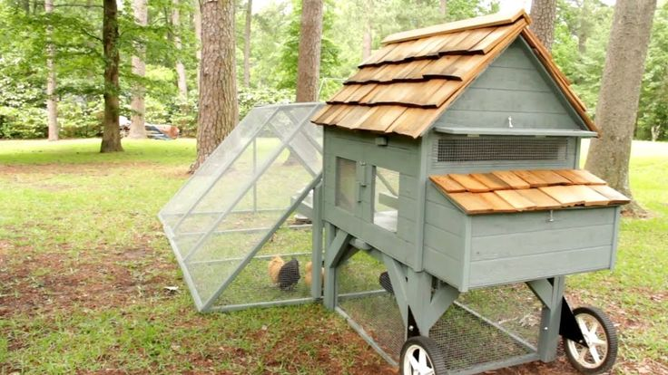 75 best images about chicken coops on pinterest gardens for Fancy chicken coops for sale