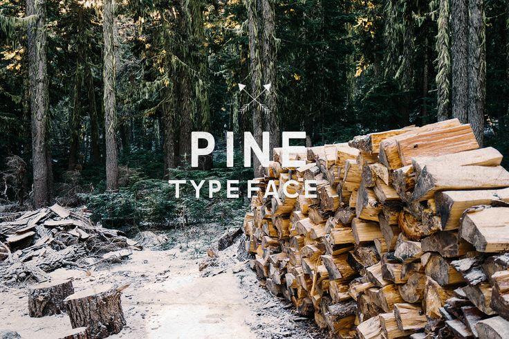 Pine Font by vladderkach on Envato Elements