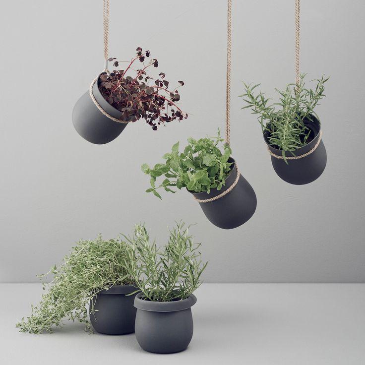 Vi er rigtig glade for RIG-TIGs GROW-IT urtepotte er nu på webshoppen! Forlæng levetiden på dine krydderurter med RIG-TIGs GROW-IT urtepotteskjuler. Urtepotten er en smart selvvandingskrukke, der hjælper med at holde jorden fugtig. Den har indbygget dræn og plads til ekstra vand i bunden, så plantens rødder selv kan suge vand efter behov. GROW-IT urtepotteskjuler sikrer dermed, at dine planter trives, selvom du skulle glemme at vande dem én dag eller to.