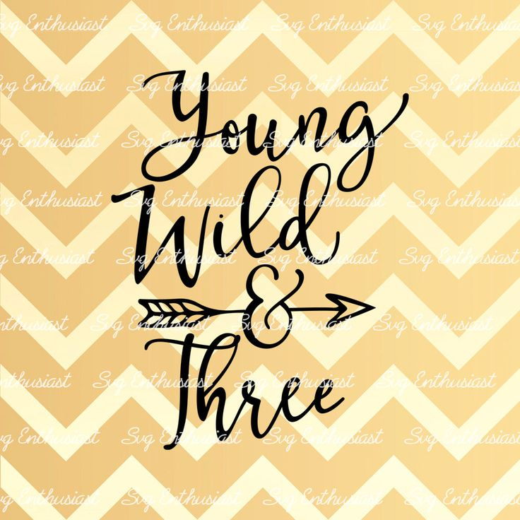 Young Wild And Three SVG, 3 Years Old SVG, Wild Child SVG