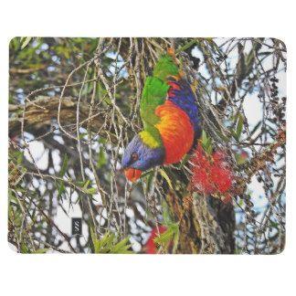 Rainbow Lorikeet Pocket Journal