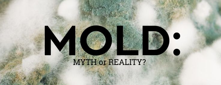 how to clean black mold from silicone
