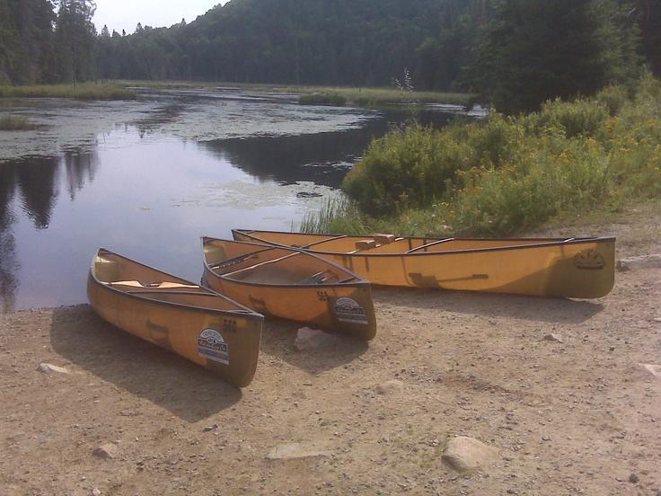 Tim River in Algonquin Park