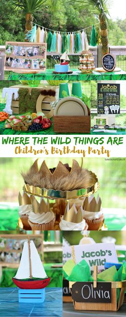 Where the Wild Things Are 2nd Birthday Party from Tuesdayswithjacob