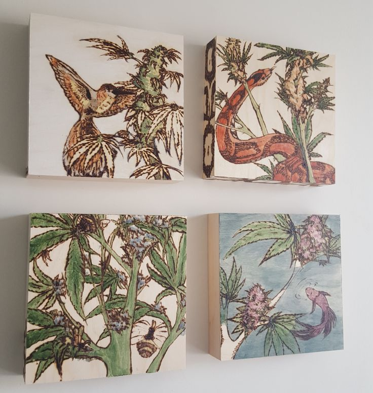 Weed Paintings on wooden canvases by Darianne Dawn, www.dariannedawn.ca