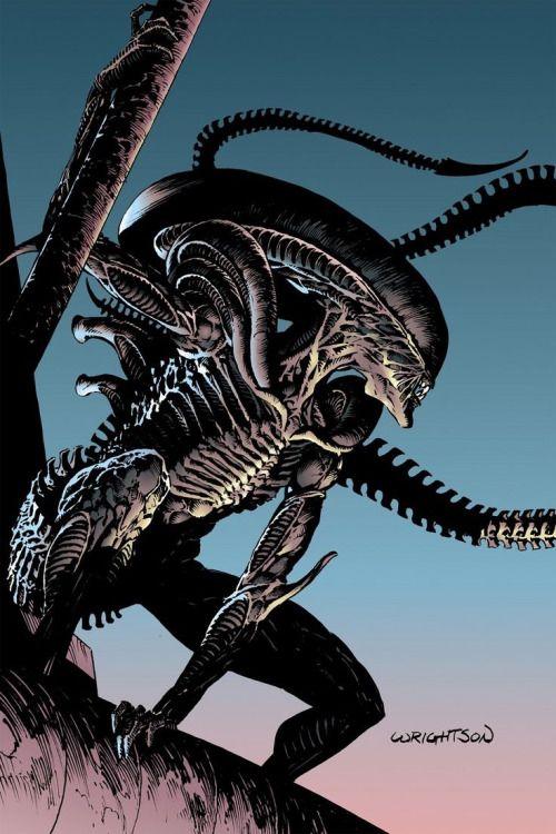 1000+ images about Xenomorph on Pinterest   Aliens, Alien vs predator ...