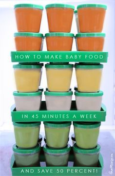 How to make baby food in 45 minutes a week and save 50 percent   House Mix