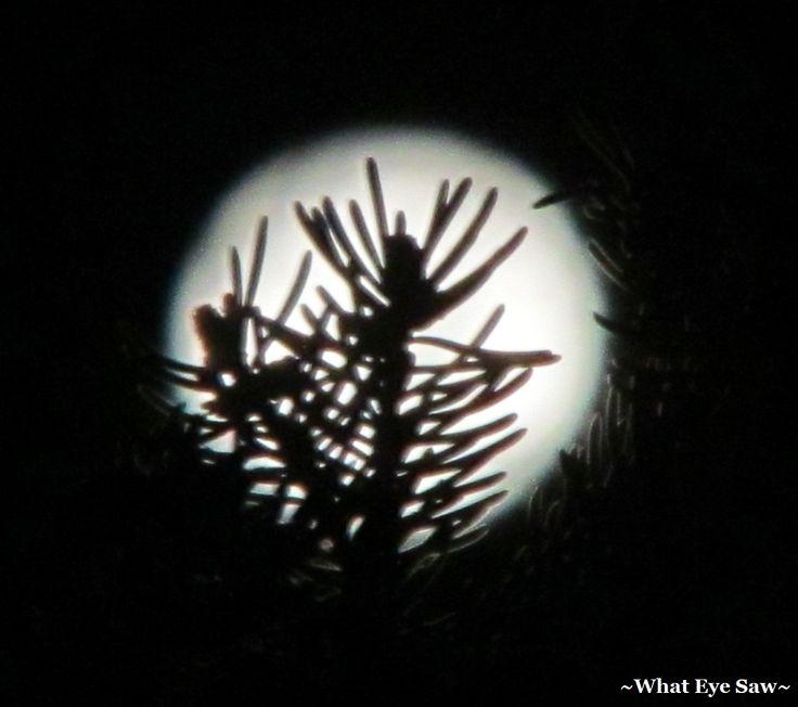 Full Moon Barre Vermont USA 12/2014