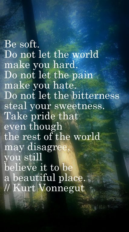 """""""Be soft. Do not let the world make you hard. Do not let pain make you hate. Do not let the bitterness steal your sweetness. Take pride that even though the rest of the world may disagree, you still believe it to be a beautiful place."""" ~ Kurt Vonnegut"""