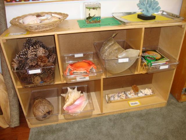 preschool science area ideas sea science area preschool school 630