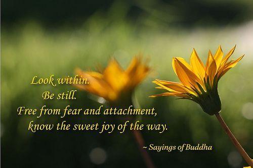 Buddhist Attachment Quotes. QuotesGram