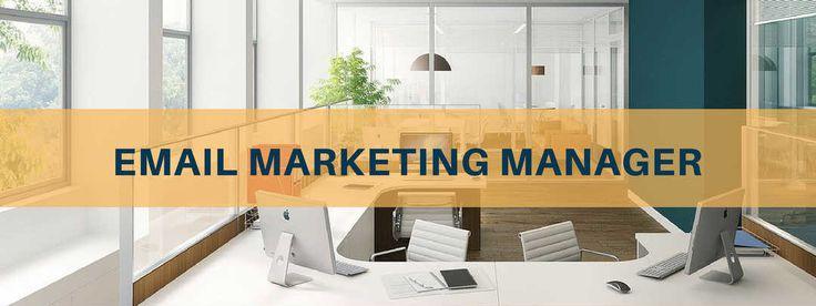 Email marketing manager: chi è, cosa fa e quanto guadagna Di cosa si occupa l' Email marketing manager? cosa significa in concreto fare Email marketing e quali sono le prospettive nel settore? In questa intervista l'ho chiesto a Marco Ottolini, presidente di Digital Metrics/Geko Advertising. #emailmarketingmanager