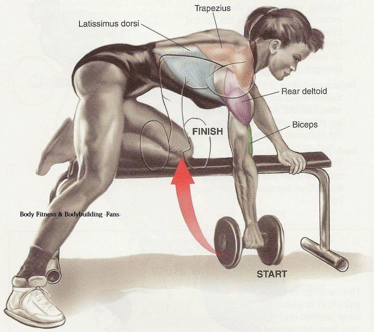 single back dumbel workout
