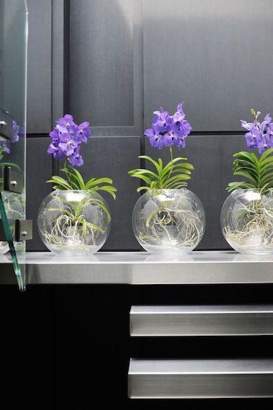 Arranjos com Orquídeas