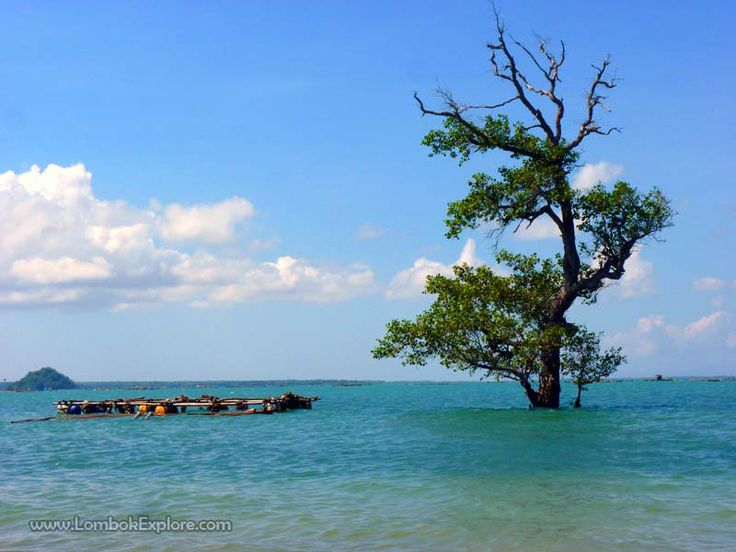 Teluk Awang (Awang bay), Central Lombok, Indonesia. For more information, please visit www.LombokExplore.com.