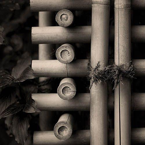 Japanese bamboo rail : photo by John Wolf, via Flickr