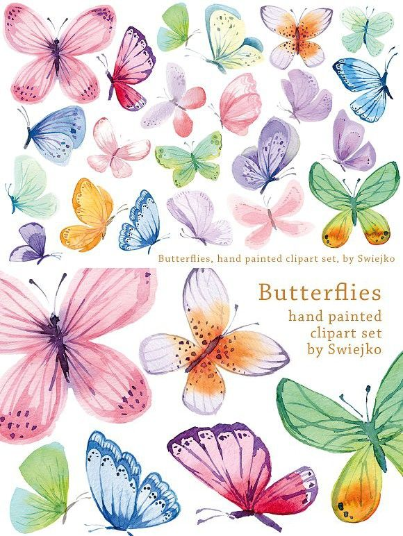 Watercolor Butterflies Butterfly Watercolor Watercolor