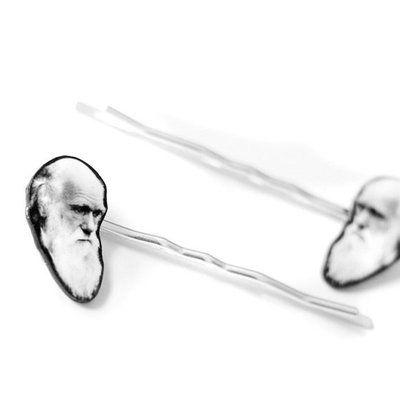 darwin hair pins: Hair Pin, Darwin Hair