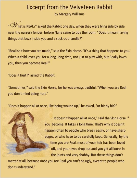 Velveteen Rabbit   ...so true...This has always been one of my favorite children's stories. And The Littlest Prince