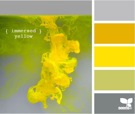 immersed yellow: Rapese, Immer Yellow, Color Palettes, Design Seeds, Color Seeds Schemes Yellow, Immersion Yellow, Kitchens Color, Rooms Color Schemes, Color Boards
