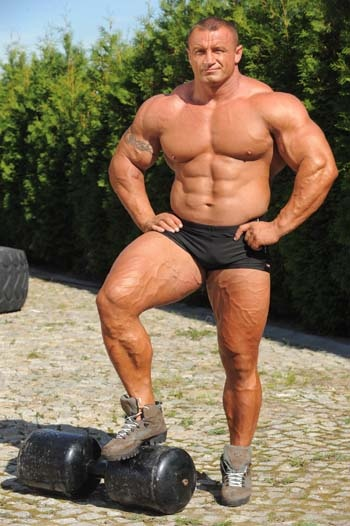 steroid cycle breaks