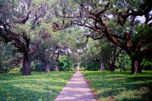 Pinterest the world s catalog of ideas for Brookgreen gardens south carolina