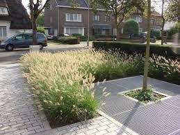 Afbeeldingsresultaat voor voortuin aanleggen grassen