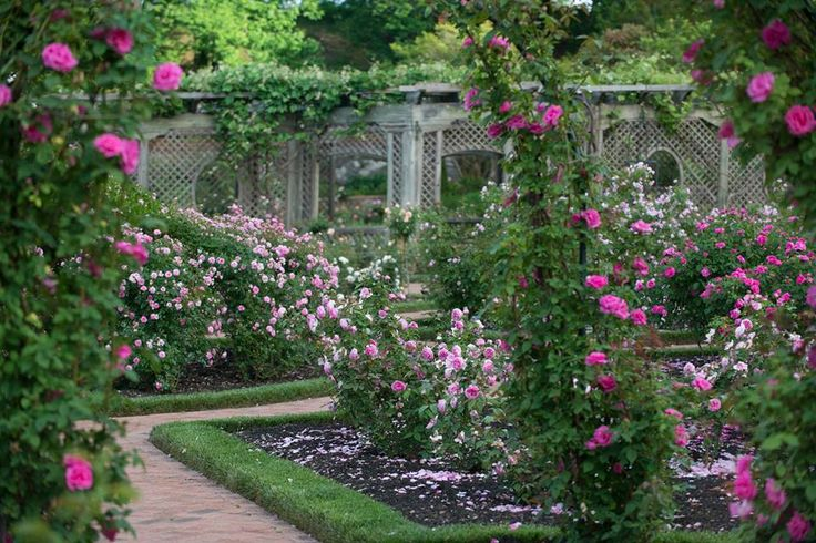 17 Best Images About Biltmore Estate The Conservatory And Beautiful Walled Garden On Pinterest