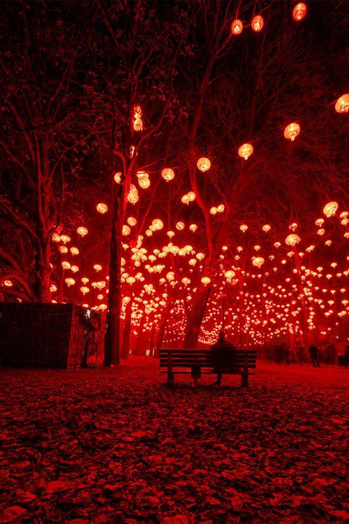 Lantern Festival | Lyon, France