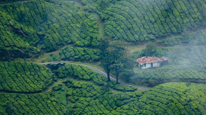 http://pavanyathri.com/  Munnar Holiday tour will be awesome if you more close with Pavan Yathri Holidays. Enjoy the ambiance of greenish nature with romantic feel of rain in this monsoon,. Make every package tour to Munnar awesome.