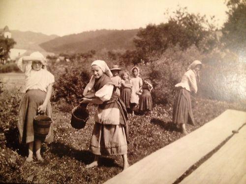 "Pavel Sochan 9x13 Black & White Photograph Slovakia ""Cloth Dowsing"" Children"