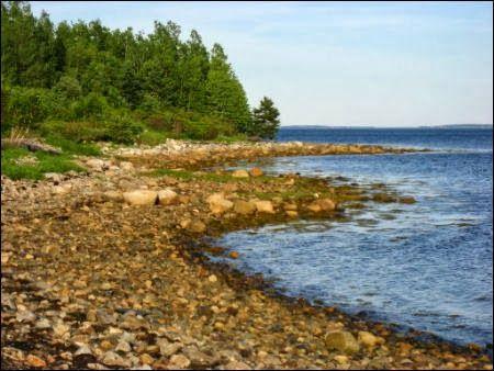 The Mystery Of The Elusive Treasure Of Oak Island