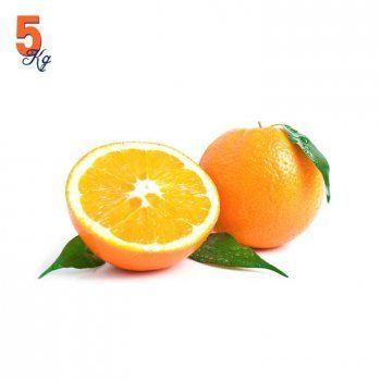 Comprar Naranjas Navel Powell en Caja de 5 Kg. Recién cortadas del árbol a tu casa en 24 horas