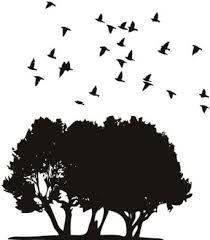Resultado de imagen de pajaros volando