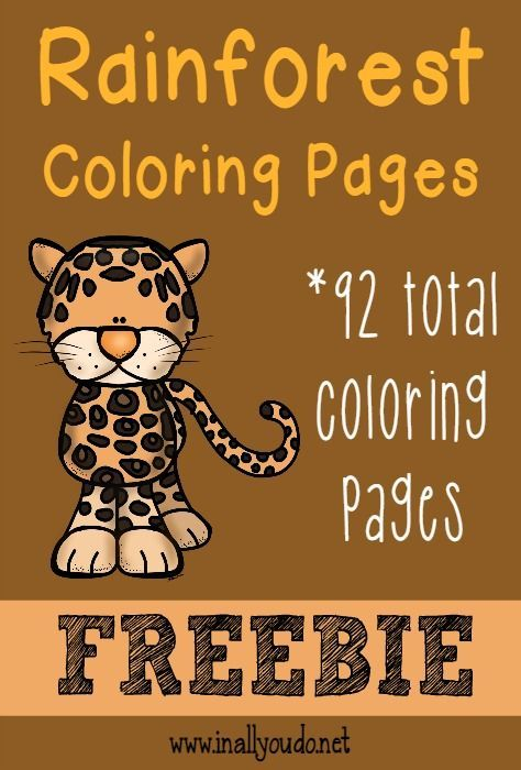 *FREE* Rainforest Coloring Pages