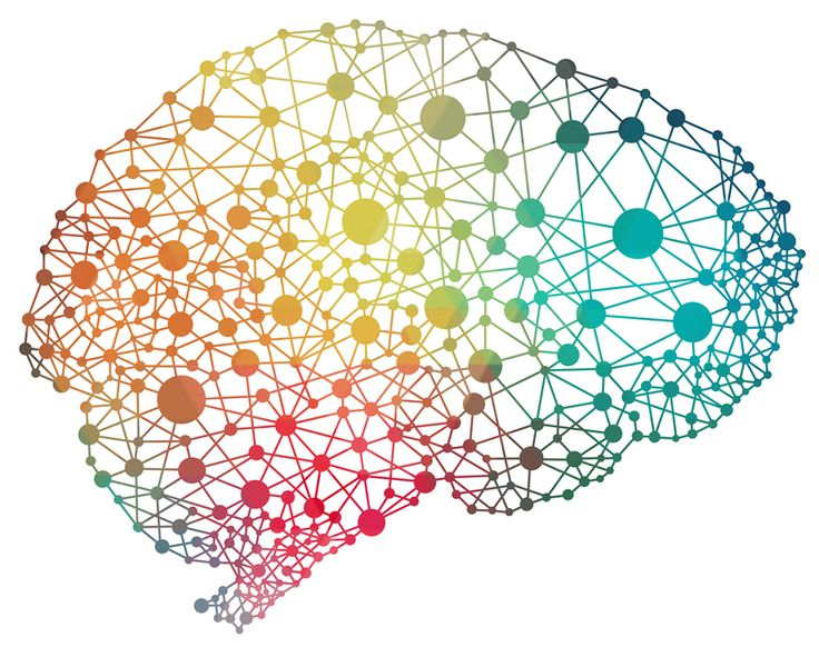 Why should talent development professionals learn about neuroscience Why should we study the workings of the brain and nervous system Kim Ruyle explains