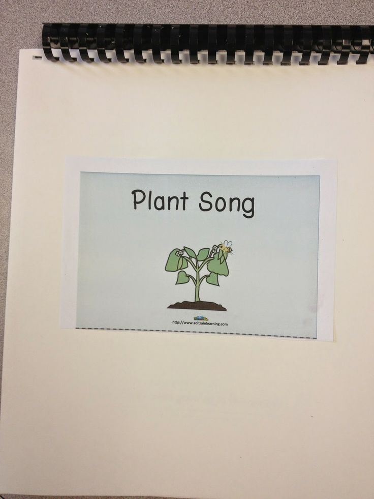 This is a song book that goes with our Plant Song that you can check out in this blog post and you can see the beginning of our sunflower activity. #plants#spring#Mp3 song#ELA#math#books